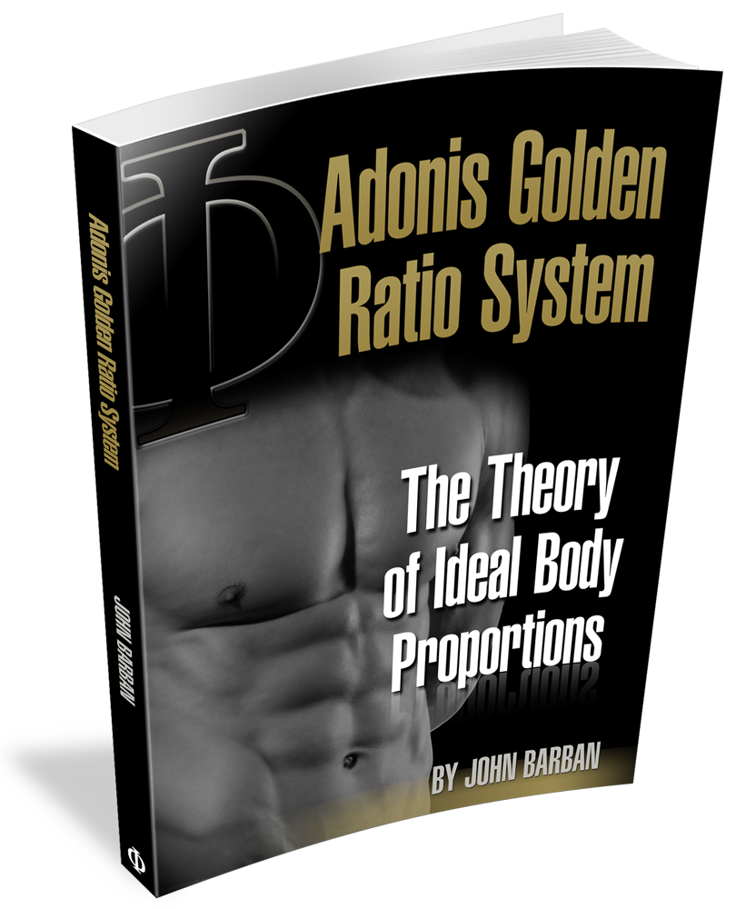 The Theory of Ideal Body Proportions